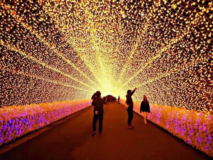 Du lịch Nhật Bản tham gia lễ hội ánh sáng ở công viên Nabana no Sato