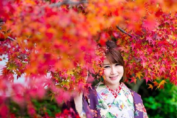 Du lịch Nhật Bản - Cây lá đỏ trong văn hóa Nhật Bản