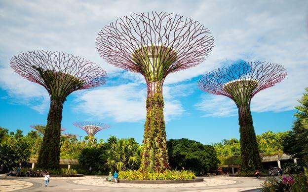 Công viên xanh tươi mát, biểu tượng của Singapore - Điểm du lịch châu Á hàng đầu