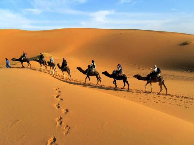 Du lịch Dubai - Cưỡi ngựa ở sa mạc Safari