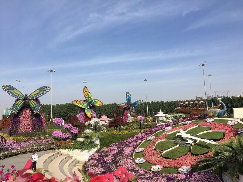 Khám phá vườn hoaMiracle - Điểm du lịch Dubai nổi tiếng
