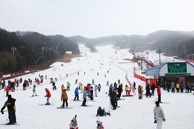 Du lịch Hàn Quốc mùa Đông vui chơi tại Pyeongchang