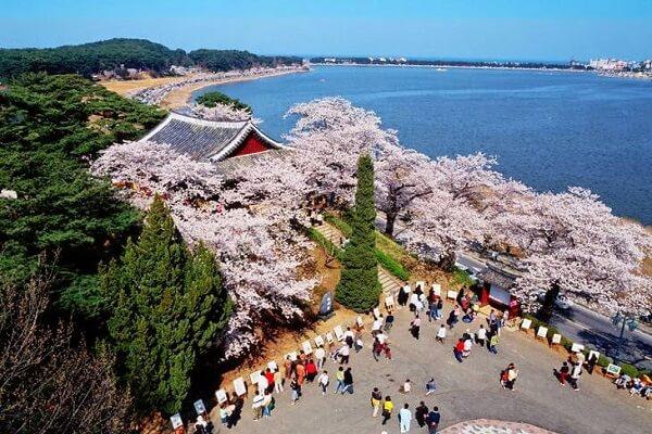 Du lịch Hàn Quốc khám phá Bãi biển Gyeongpo