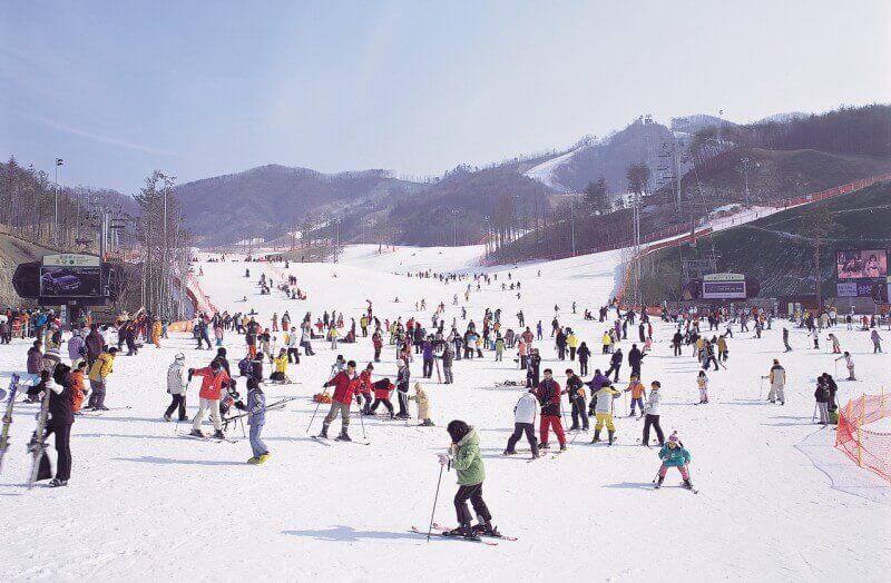Một ngày vui hết nấc ở Everland Hàn Quốc