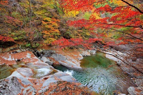 Vườn quốc gia Seoraksan Nhật Bản khoe sắc đỏ khi mùa Thu về