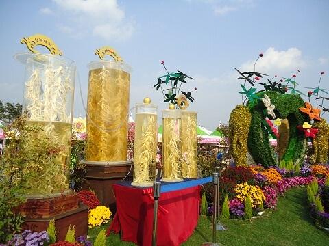 Du lịch Hàn Quốc mùa Thu - Lễ hội nhân sâm