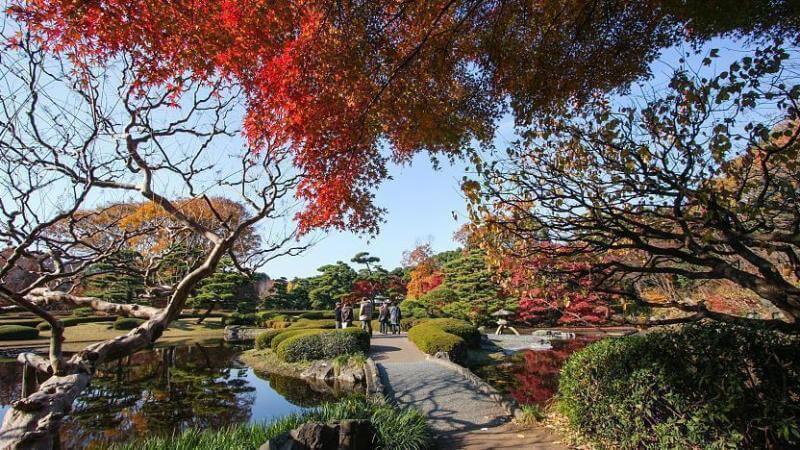 Du lịch nhật bản mùa Thu - Công viên Imperial East Garden
