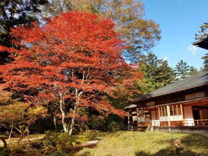 Biểu tượng của Nikko - Thành Phố cổ linh thiêng nhất Nhật Bản