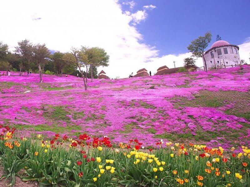 Du lịch Nhật Bản ghé thăm đảo Hokkaido