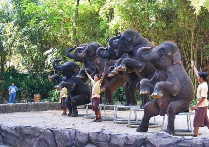 Đi du lịch Thai Lan với vô số những điểm đến đáng được thưởng thức khi ghé thăm