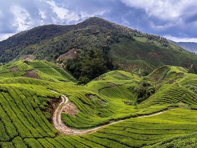 Du lịch Malaysia vào thời điểm nào là đẹp
