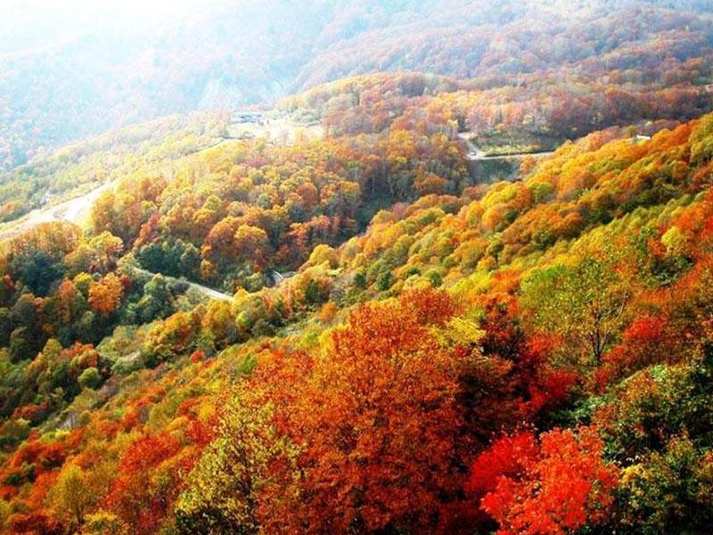 Vì sao nên du lịch Trung Quốc vào mùa thu