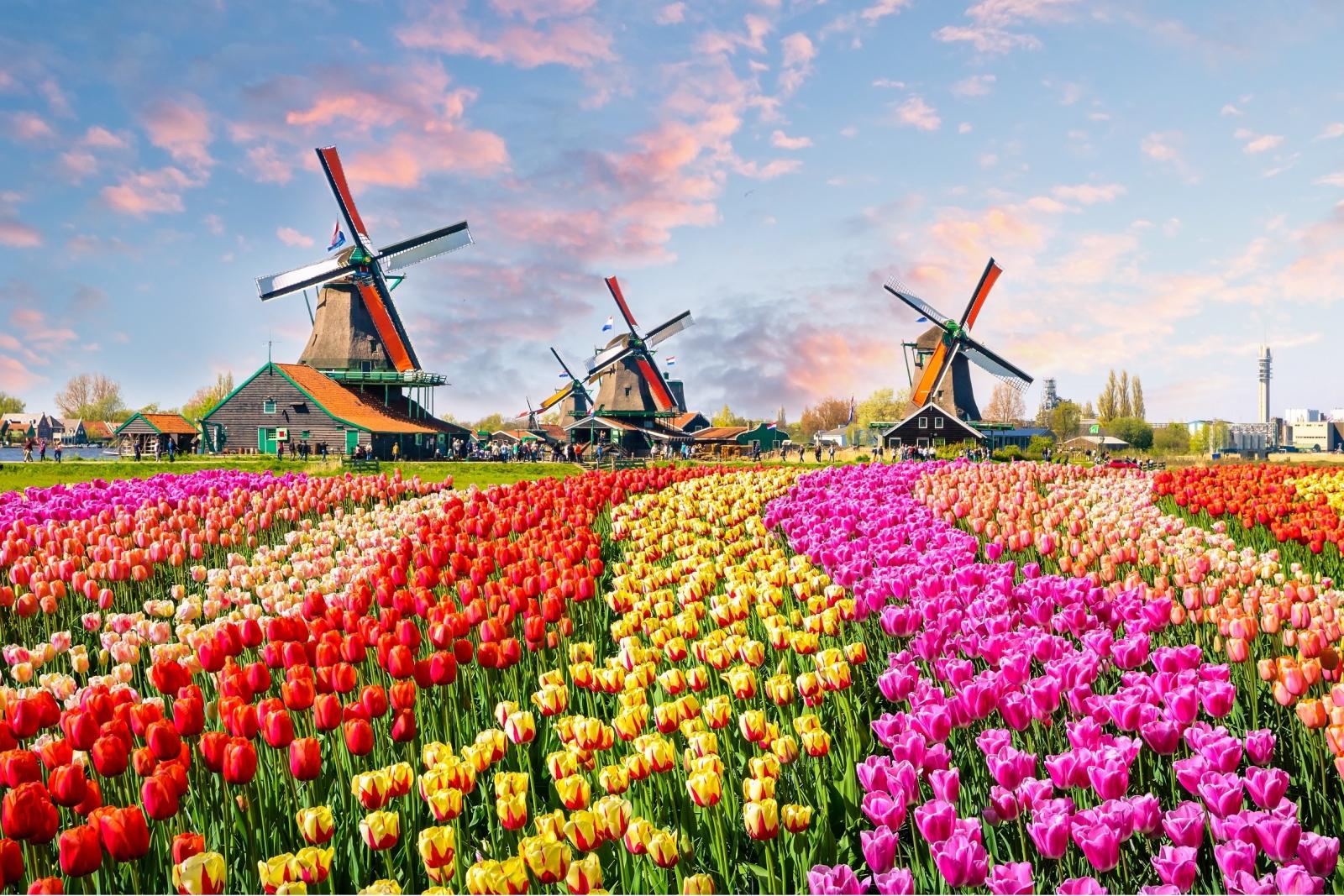Du lịch 5 nước Châu Âu có gì vui?