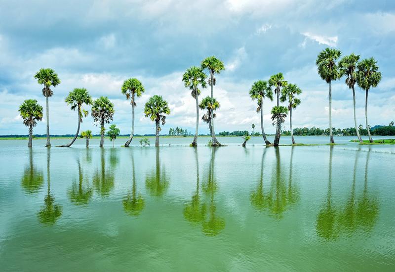 An Giang mùa nước đổ