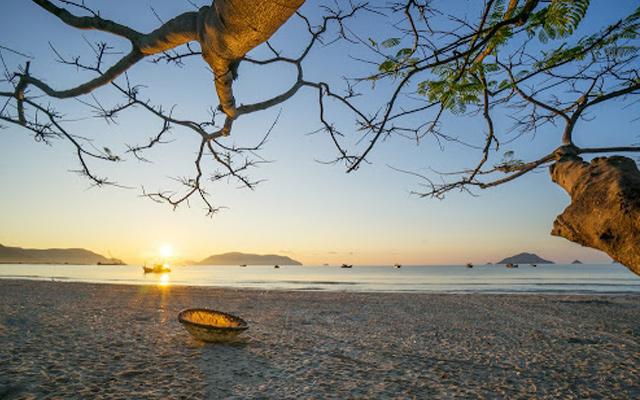 Du lịch Côn Đảo mùa nào đẹp nhất?