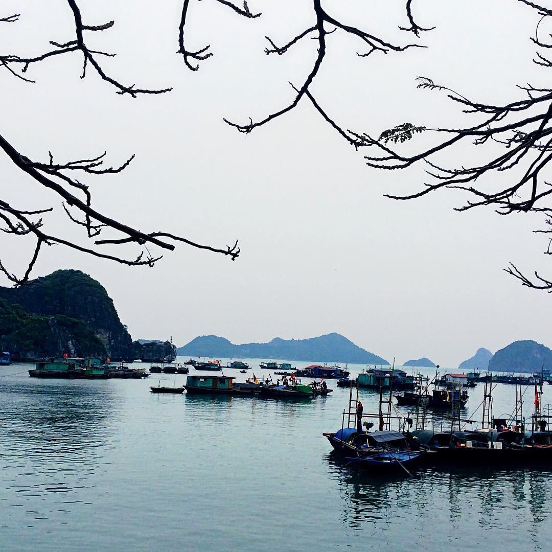 Tour Hạ Long - Chuyến đi cho du khách những trải nghiệm phong phú