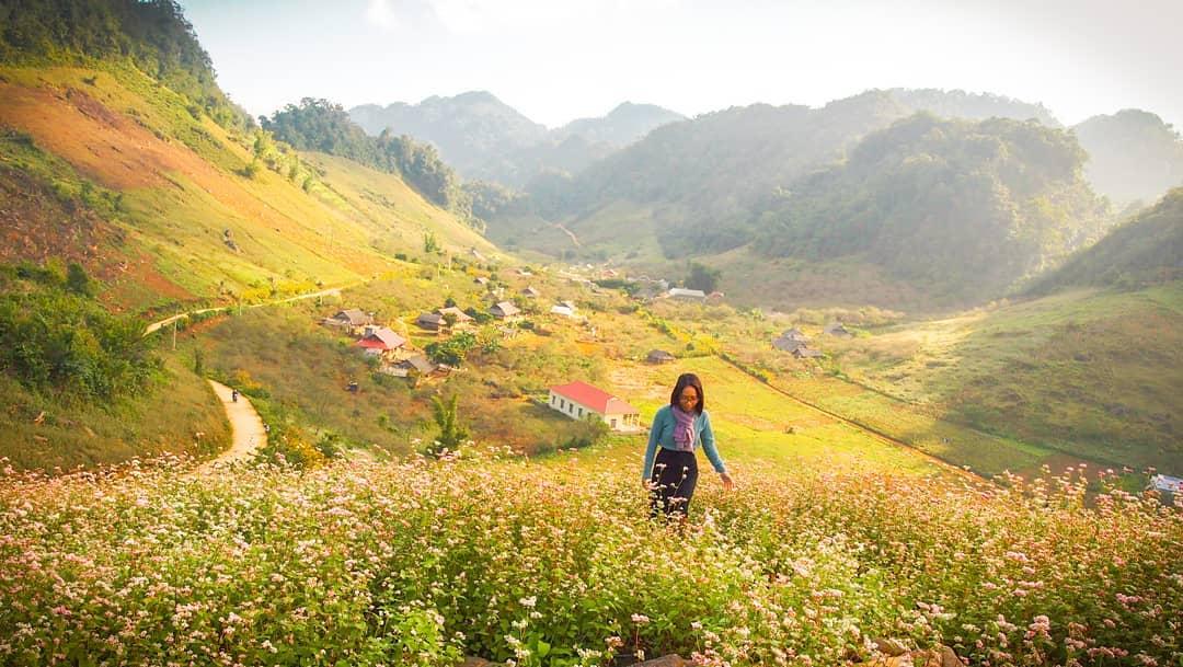 Tour miền Bắc - Mộc Châu - Nơi hội tụ những vẻ đẹp sơn dã đặc sắc của miền Tây Bắc
