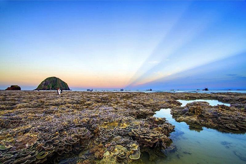 Nếu tuổi trẻ là những chuyến đi thì đừng quên Phú Yên nhé!