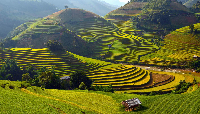 Thời gian du lịch ruộng bậc thang Yên Bái là vào mùa thu tháng 9, 10
