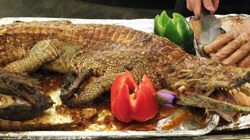 Du khách dễ dàng bắt gặp thịt cá sấu nướng tại các quán ăn, khu ẩm thực của Úc