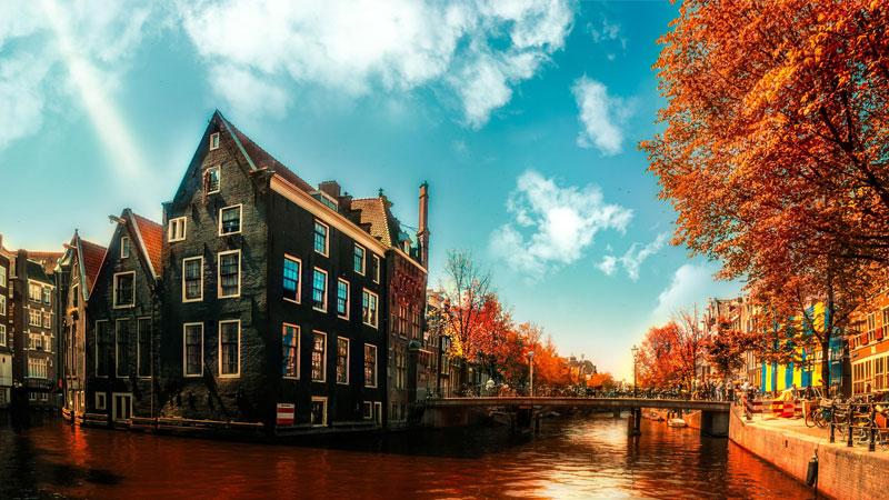 Du lịch Hà Lan mùa thu để chiêm ngưỡng những sắc vàng đẹp nao lòng