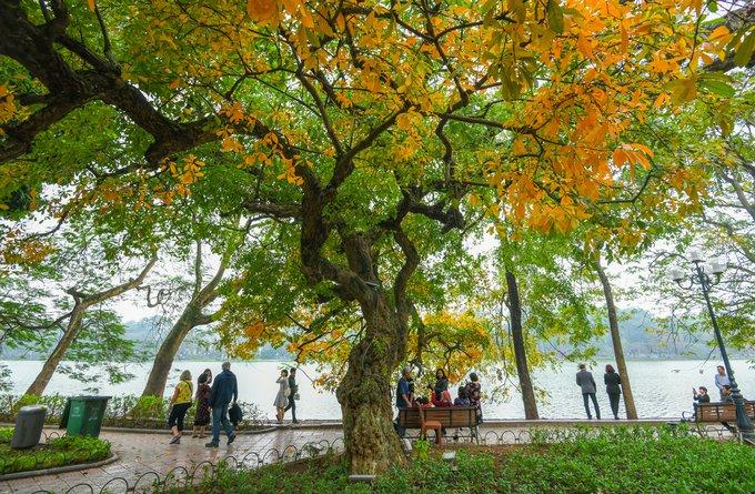 Đường Thanh Niên - du lịch Hà Nội mùa thu