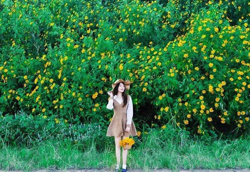 Những địa điểm ngắm mùa hoa dã quỳ Đà Lạt nổi tiếng