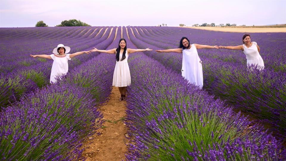 Ngất ngây giữa cánh đồng hoa oải hương nước Pháp