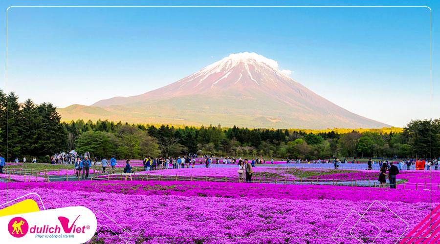 Du lịch Nhật Bản mùa Thu Tokyo - Hakone - Fuji - Odaiba từ Sài Gòn giá tốt