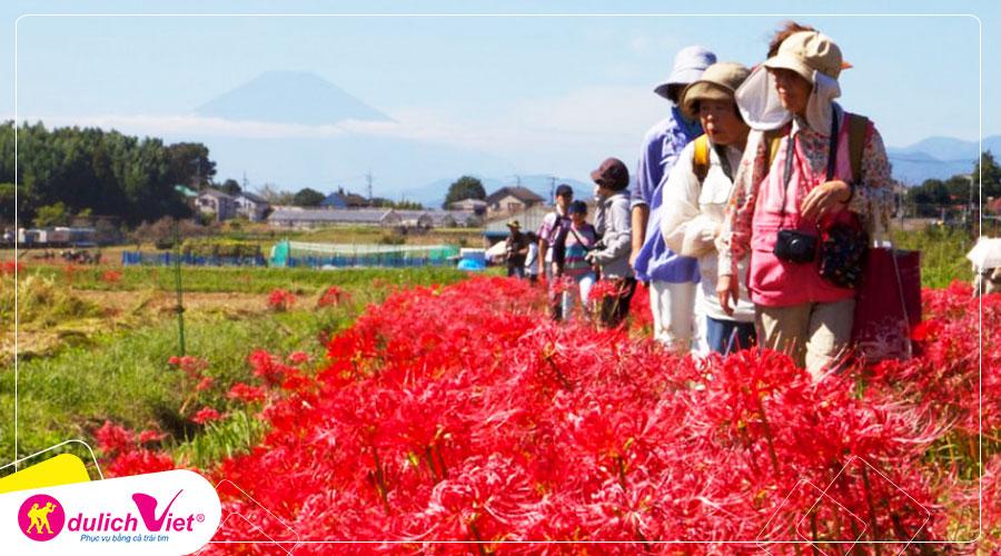 Du lịch Nhật Bản - Tour chiêm ngưỡng hoa Bỉ Ngạn đỏ rực từ Sài Gòn