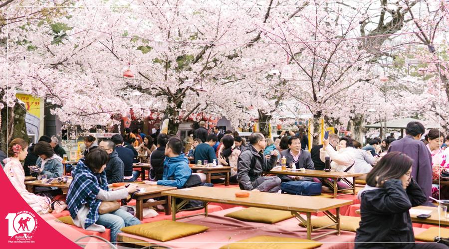 Du lịch Tết âm lịch 2019 Nhật Bản ngắm hoa anh đào nở sớm ở Izu từ Sài Gòn