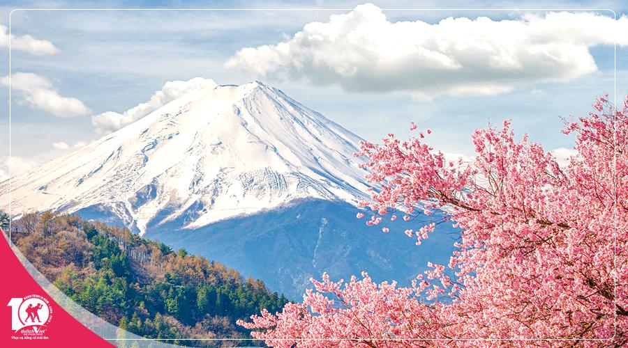 Du lịch Nhật Bản ngắm mùa hoa Anh Đào khởi hành từ TPHCM 2019