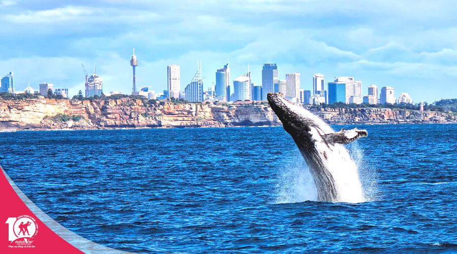 Du lịch tết nguyên đán 2019 - Tour Melbourne - Sydney từ Sài Gòn giá tốt