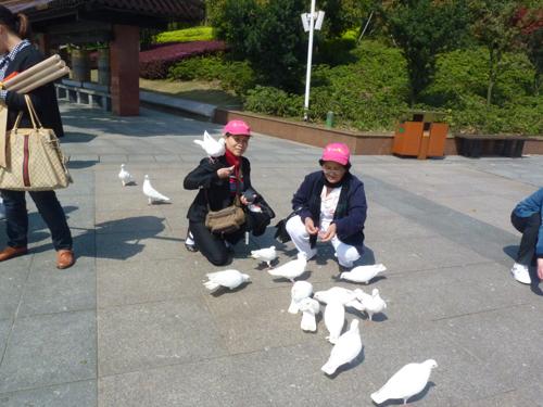 Phản hồi khách hàng đi Tour Hồng Kông – Trung Quốc ngày 01/02/2014