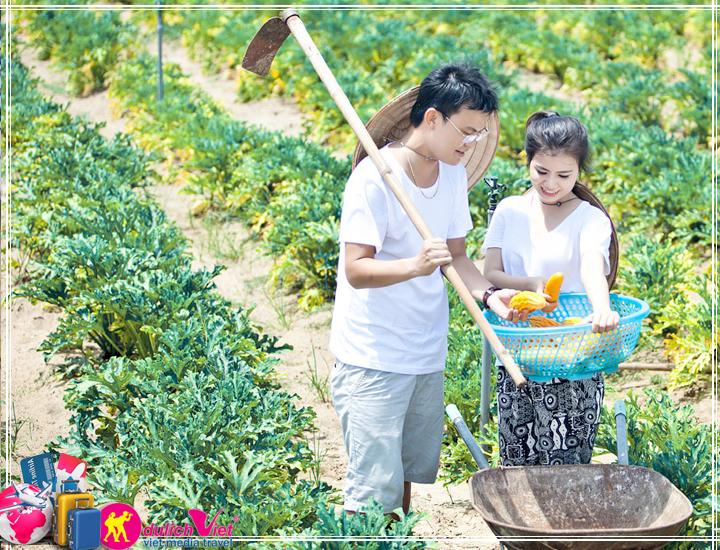Du Lịch Đà Lạt trải nghiệm với nông trại Đà Lạt giá tốt dịp hè 2017