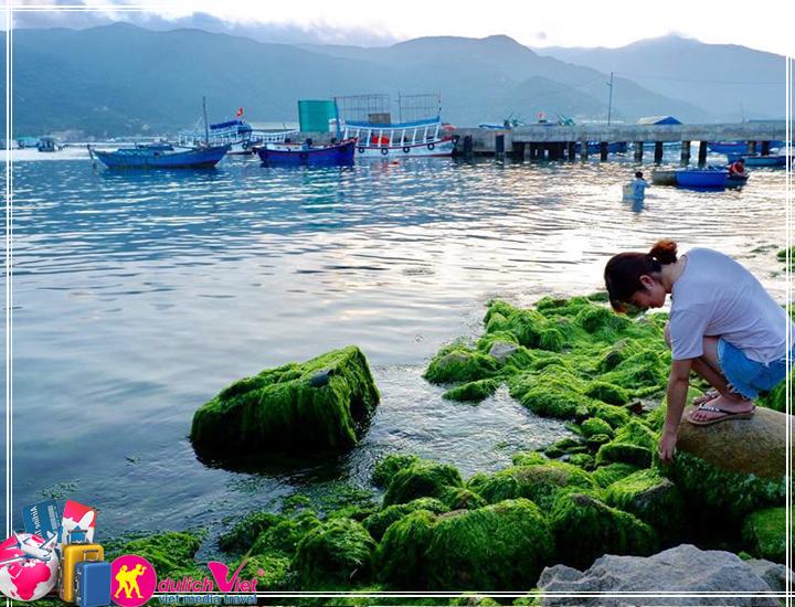 Tour Đảo Bình Hưng - Vườn Nho Ba Mọi 3 ngày 2 đêm giá tốt (T11/2017)