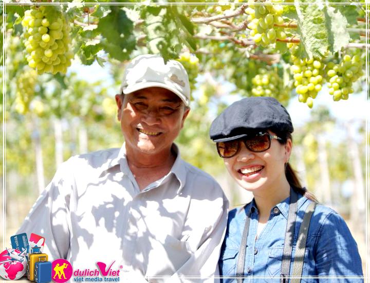 Du Lịch Đảo Bình Hưng - Ninh Chữ - Vườn Nho mùa thu 2017 giá tốt