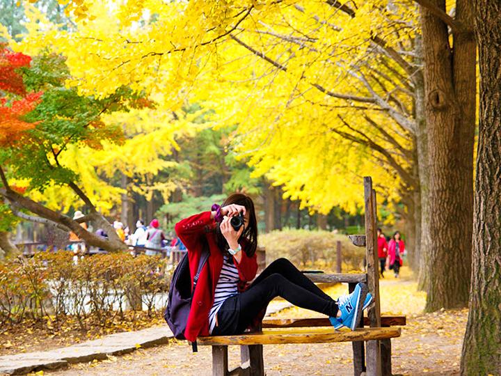 Mùa thu Hàn Quốc lại mang nét lãng mạn, duyên dáng rất riêng, làm say lòng những ai một lần đến