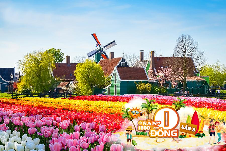 Hấp dẫn chùm Tour 0 đồng tại Ngày hội du lịch Tp. Hồ Chí Minh