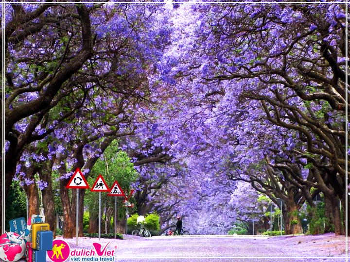 Du lịch Úc Sydney - Canberra - Melbourne - Ballarat mùa thu từ Sài Gòn