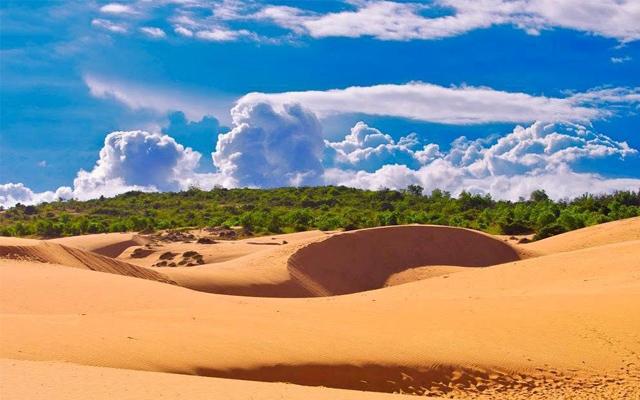Khám phá vẻ đẹp khó cưỡng của đồi cát trong chuyến du lịch Mũi Né Phan Thiết