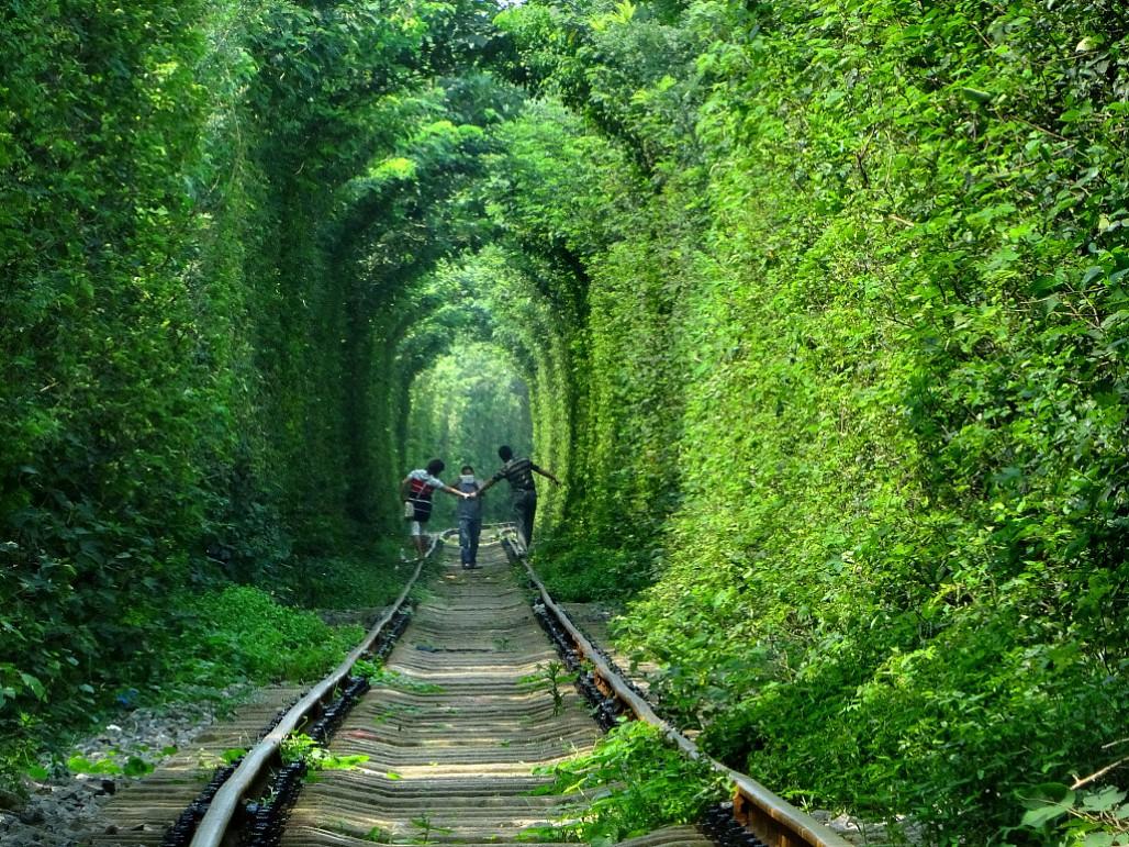 Khám phá vẻ đẹp kỳ lạ của đường hầm tình yêu Ukraine
