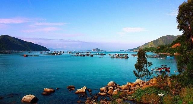Làm thế nào để tham gia tour du lịch Phú Yên vui nhất