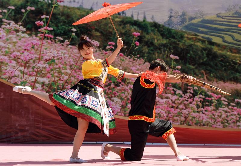 lễ hội hoa tam giác mạch
