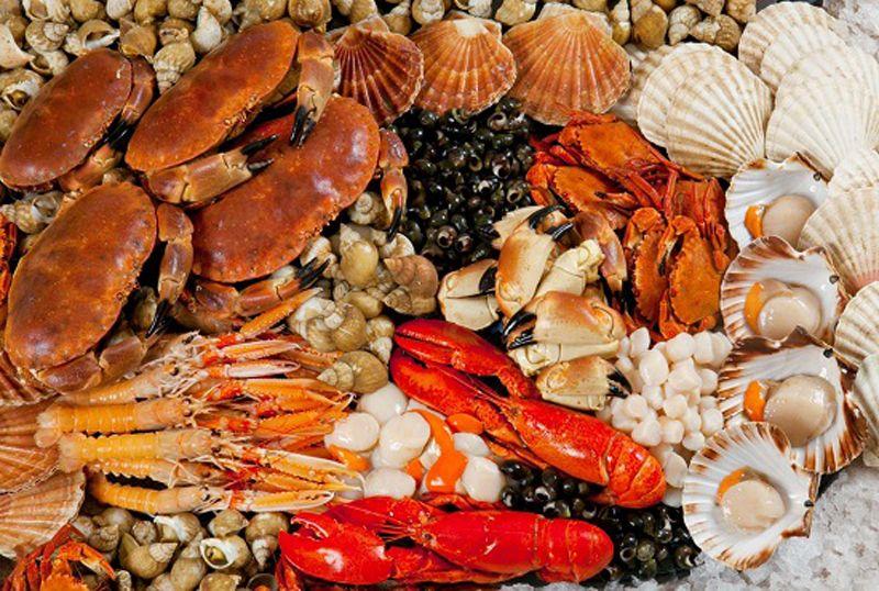 Thiên đường nghỉ dưỡng ăn uống hải sản trên Vịnh Hạ Long