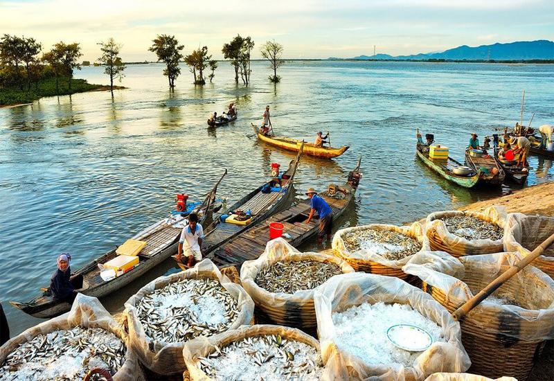 Người dân lao động An Giang mùa nước nổi