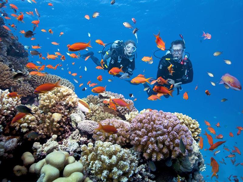 Rạn san hô Nha Trang