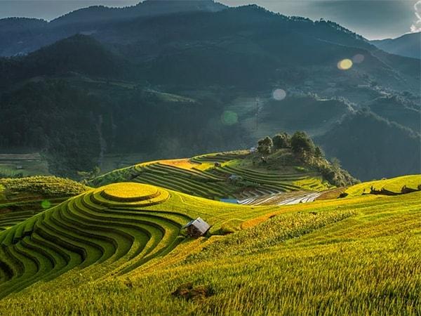 Ruộng bậc thang Yên Bái - Bản Lìm Mông