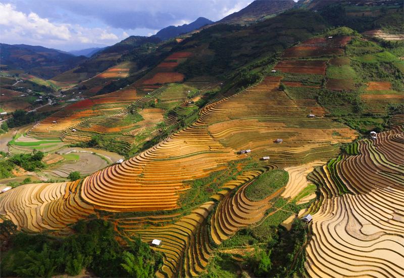 Vẻ đẹp ruộng bậc thang Yên Bái - Chế Cu Nha sau khi thu hoạch