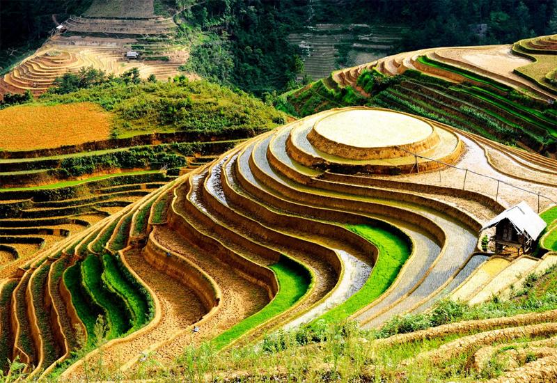 La Pán Tẩn là địa điểm ngắm ruộng bậc thang Yên Bái khá nổi tiếng